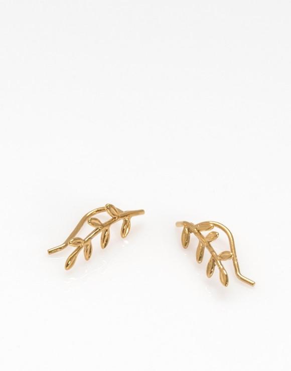 Pendientes trepadores rama oro
